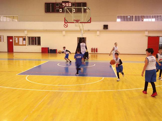 litochoro basketball